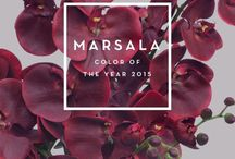 Marsala / Marsala, deep rich red/burgundy, and the colour of the year for 2015. Love these hues and excited about injecting some of my pieces with these gorgeous shades...