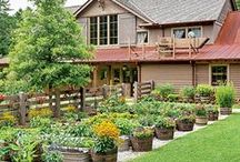 Curb Appeal / Beautiful yards, houses with curb appeal, garden ideas, and yard DIY's