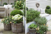 Gardening / Great inspirations for gardening