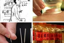 Traditional Chinese Medicine (TCM) / The things that make up Traditional Chinese Medicine.