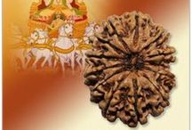 Rudraksha Beads|Online store from India |Vedicvaani.com / There are very few places in India where you can get the real and authentic Rudraksha. Not everyone can make the perfect and give you the perfect holy Rudraksham. But you won't have to worry about the authenticity when you choose to buy online Rudrakssh at Vedic Vaani. Vedic Vaani offers Energized Rudraksha which provide immense advantages to its user.