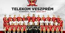 K&H Liga 2016-2017 (Hungarian Championship)