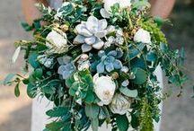 Succulent Wedding Ideas / Succulent Wedding Ideas