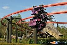 De Vleermuis - Plopsaland de Panne (Belgique) / Photos du roller coaster De Vleermuis situé à Plopsaland de Panne (Belgique). Plus d'information sur notre site www.e-coasters.com !! Tous les meilleurs Parcs d'Attractions sur un seul site web !! Découvrez également notre vidéo embarquée à cette adresse : http://youtu.be/ua3oj8RZgb4