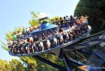 Tifon - Parque de Atracciones Madrid (Espagne) / Photos du Roller Coaster Tifon situé à Parque de Atracciones Madrid (Espagne). Plus d'information sur notre site http://www.e-coasters.com !! Tous les meilleurs Parcs d'Attractions sur un seul site web !! Découvrez également notre vidéo embarquée à cette adresse : http://youtu.be/NCei0vi5YF0