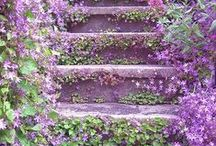 Stairs-Doors-Paths / I love photos-art & pictures of stairways- doors and paths...
