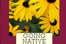 Going Native: Small Steps to a Healthy Garden / Does a garden that requires little work, saves you money and protects the environment sound good? Would you also like a garden that's healthy and thriving year round? Then Going Native is for you.