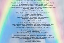 Pet Loss POEMS w Brent Atwater / Pet Loss Poems that help heal you heart! Return From Rainbow Bridge poem in 10 languages Author Brent Atwater  ***  www.brentatwater.com