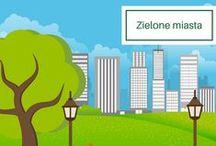 Zielone miasta / Poszukujesz inspiracji na zieloną przestrzeń? Świetnie trafiłeś! Znajdziesz tu mnóstwo pomysłów i porad! #greencity #green #nature #plant #urbangardening #urbangarden #flower