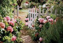Wiosenne inspiracje / Inspiracje na powitanie wiosny w Twoim domu i ogrodzie! Sprawdź nasze pomysły i pozwól otoczeniu rozwkitnąć ;) #hydrobox #hydroboxpl #rosliny #roslina #kwiat #kwiaty #ziola #zielnik #balkon #taras #ogrod #ogrodnictwo #domiogrod #flowers #plants #garden #homedecor #inspiration #diy #decoration #green