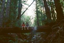 Let's Adventure / Wanderlust  / by Lauren Farkas