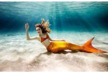 Denizkızları/Mermaids / Denizkızlarının hayatları, hikayeleri ve filmleri.