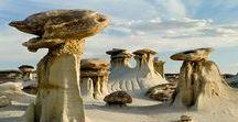 Geologia - Fossili Minerali e Dinosauri