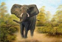 Elefant / Stop killing Elefant....