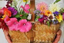 Flowers / I Always have fresh flowers in my home / by Sherry Sayers