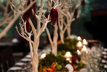 Table Settings / by Sherry Wall