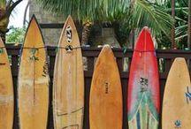 Surfy Surfy