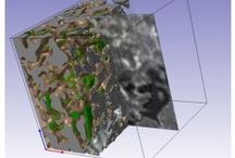 Materials and Industrial NDE Applications / Simpleware provides a rapid and easy method of exploiting the unique insights offered by 3D image based modelling to the specific challenges of the field of materials research, development and testing. A wide range of algorithms and filters enable the rapid generation of highly accurate, highly intricate analysis ready meshes. A selection of measurement tools are also available to allow comprehensive interrogation of material structures.   Learn more: http://simpleware.com/industries/materials/
