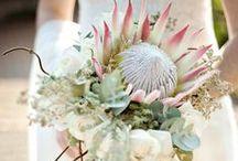 protea arrangements / flower arrangements for different occations