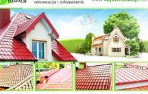 Malowanie dachów / Roof painting