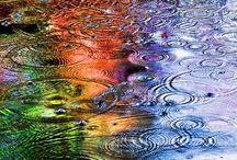 It's Raining cats & dogs / by Carla Van Galen