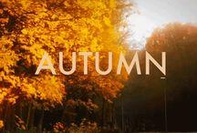 Autumn/2 / by Carla Van Galen