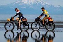 Bicycles / by Carla Van Galen