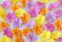 Colorful flowers / by Isabella Coppola di MilkyWay