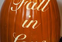Fall / All things fall and holidays