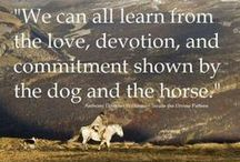 Trail Humor & Happiness / by Horse Trails & Camping Across America