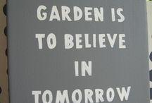 Grow it! / Amateur kitchen gardening