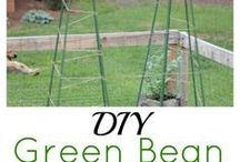 Gardening DIY Projects