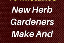 Herb Gardening For Beginners