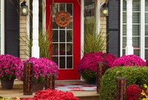 Fabulous! Curb Appeal / Fabulous looks and inspiration for the exterior of our Gainesville residential or commercial properties.