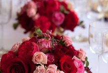Red colour theme wedding / Wedding with red colour