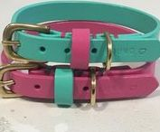 Pet Accessories... / Anything and everything that I find exciting in the world of Dog accessories