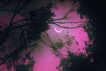 ☀✰☀ Purple,  Black & Pink ☀☀✰
