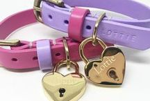 Dog Collars / A collection of the most beautiful dog collars from around the world!
