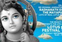 Lotus Festival 2015 / Lotus Festival 2015