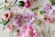 El arte del Bouquet (HOW TO's)