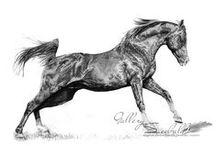 Pferdezeichnungen / Hier möchte ich euch gerne mein Hobby vorstellen :) Besucht doch auch mal meine Facebookseite https://www.facebook.com/Gallery.Seebald/