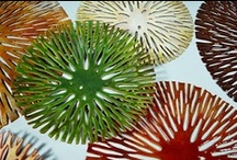 plates,platters & bowls / by Linda O'Reilly