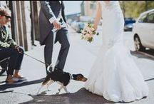 Wedding Eriika and JP / Weddings, Flowers, Brides
