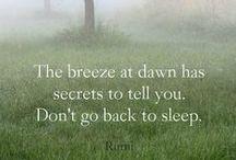 Rumi / The wisdom of Rumi