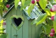 Bird Houses, Feeders & Baths