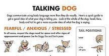 Behavior / canine and feline behavior information