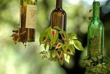 Bottle Plant Holders / Recycled bottles that are converted into holders for plants.