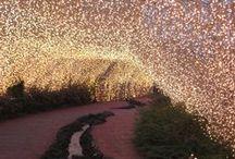 O u t d o o r s  / Flowers, Tree houses, fairy lights....a garden just like the fairy-tales!