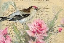 Printables BIRDS