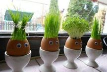 fun garden / funny photos about gardening and nature